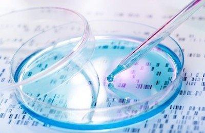 Mutazione gene