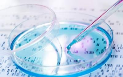 Terapia di mantenimento con Olaparib per il tumore pancreatico avanzato BRCA mutato