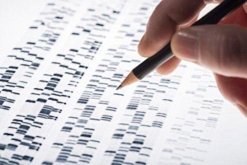 Test genomico tumore polmone